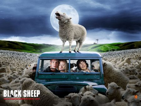 Blacksheep_small